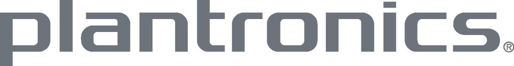 PLT_logo_gray_5inch_jpg_for_Word